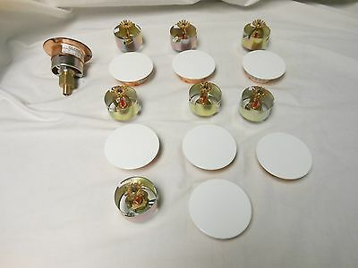 Lot of 8 GLOBE 155 - 200  Fire Sprinkler Cover Plate White - Valve Head