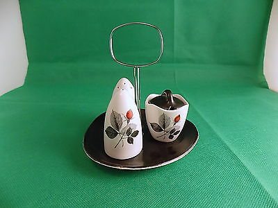 Midwinter Stylecraft Fashion Shape Petite Rose Cruet Set