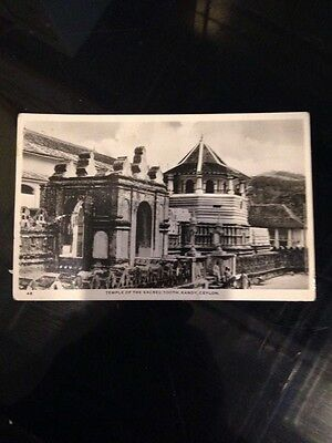 Old post Card 1950's Ceylon