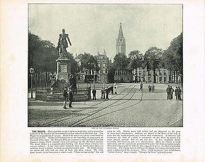 The Hague, View Of The Vyverberg Square Antique Print 1895 #987659