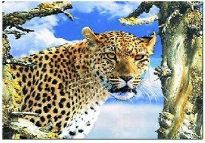 3D  Picture Of Cheetah Head , Amazing 3D Effect,