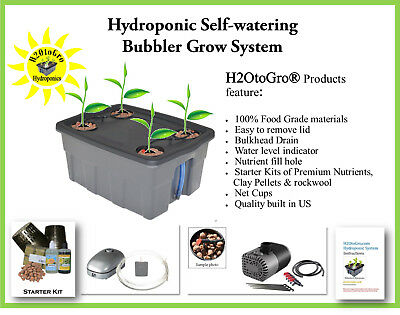 SELF-WATERING DWC HYDROPONIC Grow System ~ #4 by H2OToGro