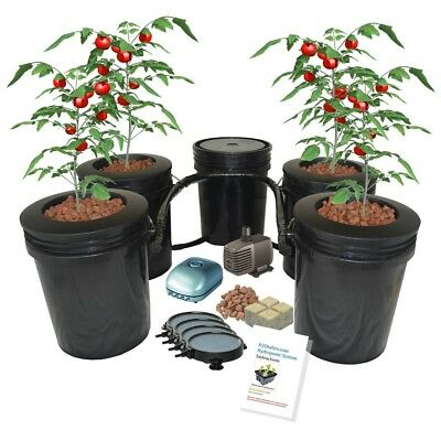 Recirculating 5-gal 4-site DWC BUBBLER Bucket Hydroponic system H2OtoGro
