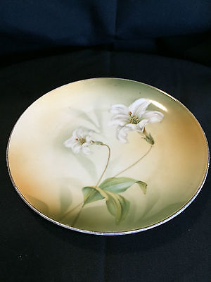 Lily Hand Painted R S Germany Plate