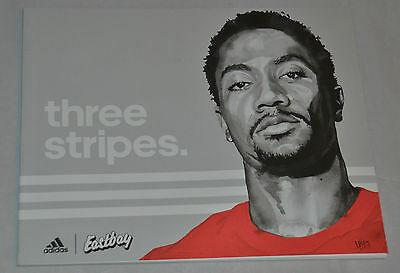 MINT! Eastbay Catalog ADIDAS Cover DERRICK ROSE February 2015 Shoes D. D