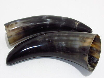 2 Cow horns...02d73......Polished natural colored cow horn.....ox horns
