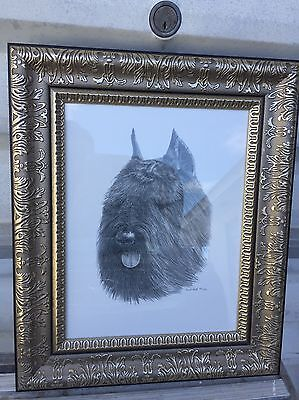 Bouvier Framed Art