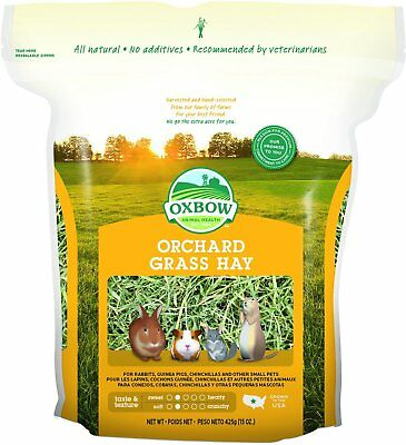 Oxbow Bene Terra HAY for Rabbits Guinea Pigs Chinchillas ORCHARD GRASS HAY 15 oz
