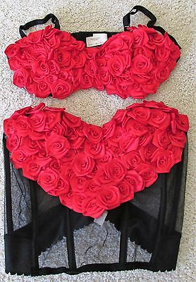 Victoria's Secret Red Rose Bra & Bustier Size 34 B/C - Gorgeous!