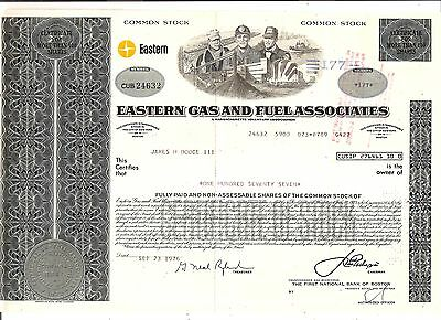 177 Sh. 1976 Old Canceled Stock Certificate Eastern Gas And Fuel Associates