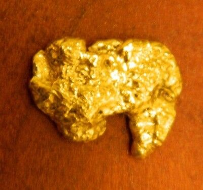 Rare Historic 3.9 g California Coloma Gold Rush Nugget (Buffalo Wings)