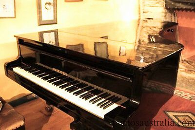 Estonia 9ft Concert Grand Piano from Steinway Specialists