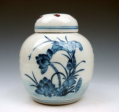 Vintage Blue&White Porcelain Lotus Dragonfly Flowers Tea Caddy Pot Jar #09111501