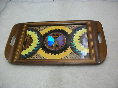 collectible inlaid wood butterfly wing tray  16 1/2 x 9 1/8