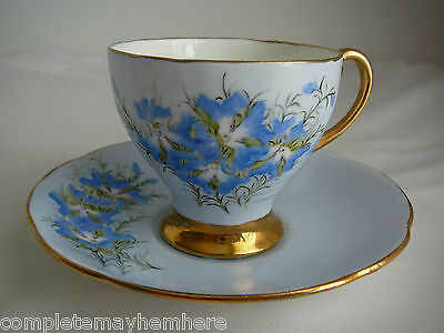 Royal Standard England small cup and saucer Leschenaultia Perth signed D. Agnew