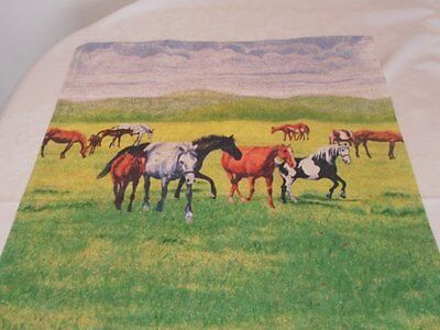 "Colorful 100% Cotton 25"" Square Pillow Cover Horse Pony Scenes VGC"