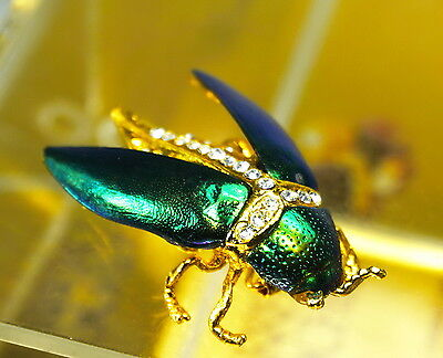 Antique Asian Natural Bug Beetle Insect Cicada Pin Brooch 18kgold filled safely