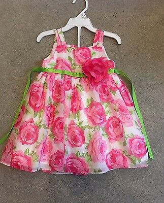 Koala Baby Toddler Girl Easter Floral Pink Green Roses Dress 24M 2T