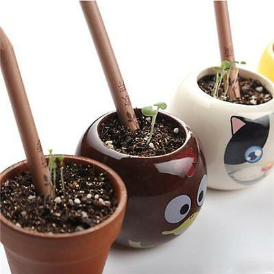 Set Of 8 Sprouting Bud Sprout Pencil Pencils Plant Seeds New Jian