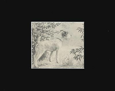 Wire Fox Terrier Dog Puppy Print 1942  Marguerite Kirmse  8X10 Matted INTERESTED