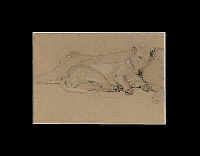 Vintage Bull Terrier Dog Rexaxing Print 1934 by Cecil Aldin 8X10