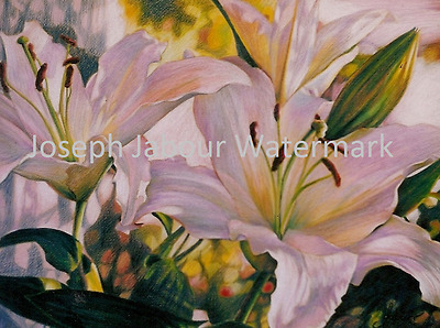 Original Joseph Jabour Artwork - Coloured Pencil Drawing - 10 Lillies III