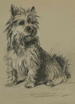 Cairn Terrier Dog Dark Coated by Lucy Dawson 1940 ~ LARGE New Blank Note Cards