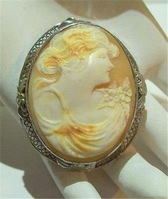 Stunning Large Shell Cameo Pendant In Silver Bezel