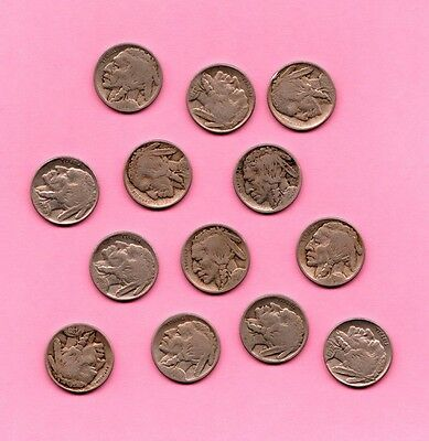 Collection of 13 Early Buffalo Nickels