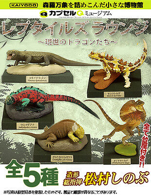 Kaiyodo Animatales Capsule Q Museum CQ Reptiles Lounge world lizards set of 5