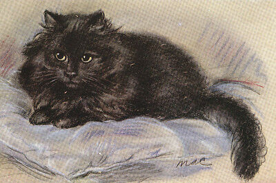 Beautiful~ Black Persian Kitten Cat - 8 LARGE New Blank Note Cards