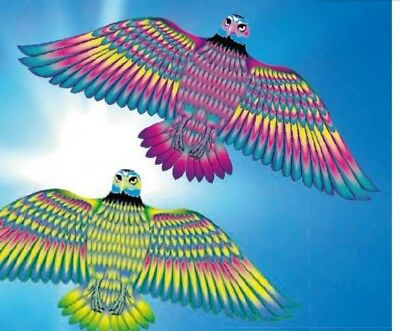 Krazy Kitez Eagle Kite Assorted Colours
