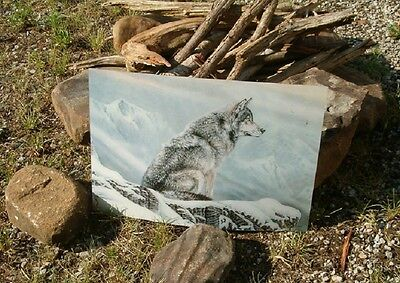 3D  Picture Of Lone Wolf In The Snow , Amazing 3D Effect ,