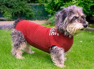 DogEase Bamboo Pet Wound Protection Suit - The Alternative To The Cone Of Shame!