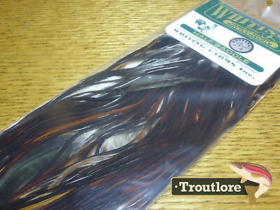 Whiting Herbert Miner Coachman Brown Half Cock Saddle New Bronze Fly Tying Cape