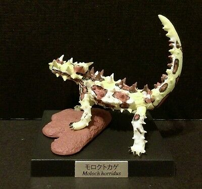 Kaiyodo Museum Q Reptile Lounge Thorny Dragon Devil Lizard Figure Model