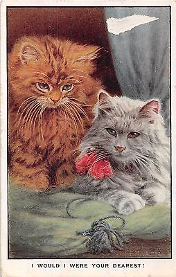 POSTCARD    CATS    I  would I were your  Dearest !