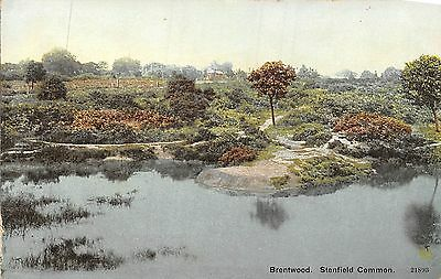 POSTCARD    ESSEX    BRENTWOOD  Shenfield    Common