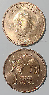 Zambia 1 Ngwee 1983 anteater 16mm Copper plated Steel Coin