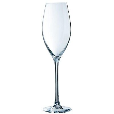 Chef & Sommelier (Pack of 24) Grand Cepages Champagne Flutes 240ml BARGAIN