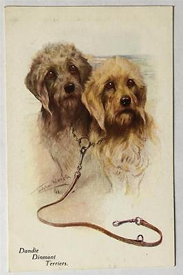 Pair Of Dandie Dinmont Terriers Dog Postcard Artist Signed Unused Henderson