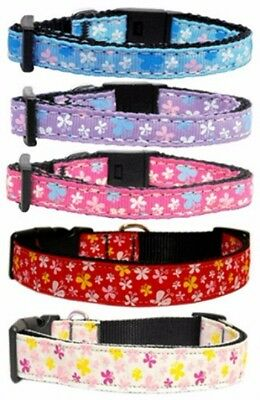 """New BLUE Butterfly Dog Collar and Leash, Nylon, Small 10-14"""""""