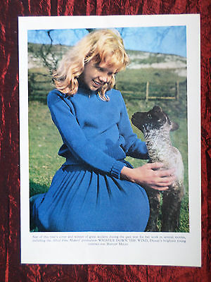 """Hayley Mills - Film Star - 1 Page Picture -"""" Clipping / Cutting"""""""