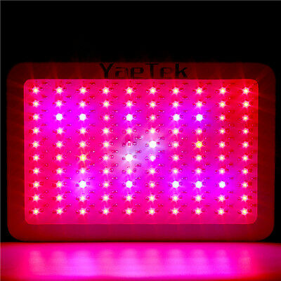 1000W LED Grow Light Full Specturm Greenhouse & Indoor Plant Flowering Growing