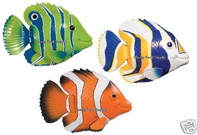 Swim Ways Rainbow Reef MINI Fish pool toy CHOICE COLOR