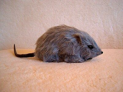 RAT MOUSE HAUNTED HOUSE HALLOWEEN PROP FURRY ANIMAL Replica 69 FREE SHIPPING USA