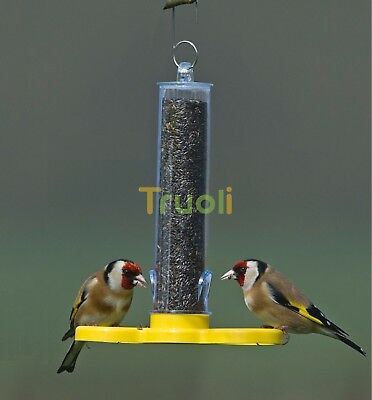 Hanging Wild Small Bird Feeder Ready Filled with Niger Seed Goldfinch Finder