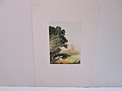 MICHAEL CARLO Shaded Pool PRINT hand pencil signed & numbered 96/125