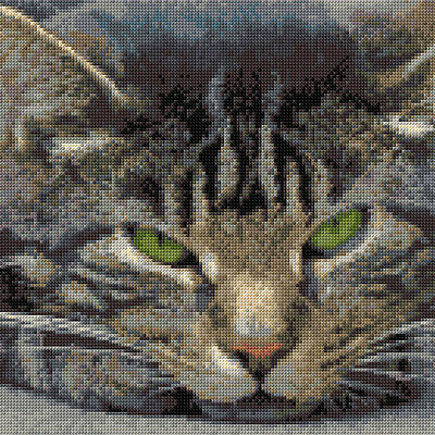 """Grey Tabby Cat, Facial - Animal Cross Stitch CHART ONLY 10""""x10"""", 14 Count Anchor"""
