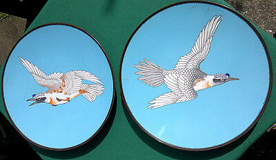 """Pair of Antique Japanese Meji Period Cloisonne Chargers/Plates 19thC  12"""" dia"""